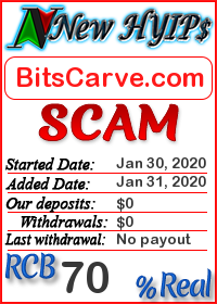 BitsCarve.com status: is it scam or paying