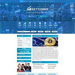 skycoins status