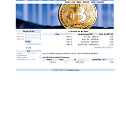 BitcoBid.com shot