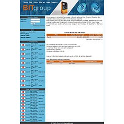 BitGroupLtd.Com shot
