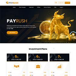 PayRush.io shot