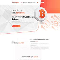 BitGenius.Net shot